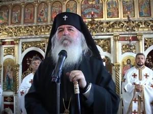 IPS Ioan, Predica, Parohia Viile Fabric, 07.01.15