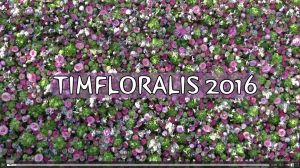 timfloralis_
