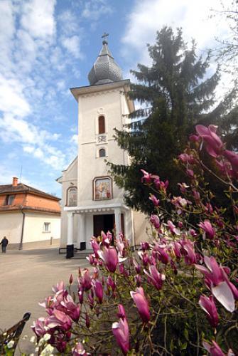 View The Mănăstirea Timişeni Album