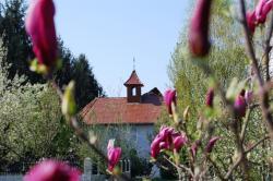 View The Festival coral la Mănăstirea
